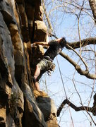 Rock Climbing Photo: I think this is 'Therapist' at Foster Falls...10's...