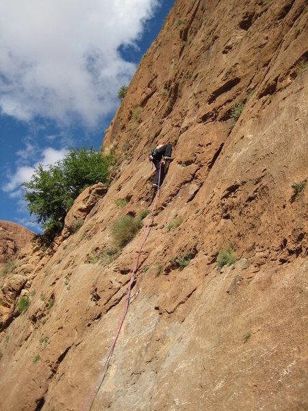 Rock Climbing Photo: Max cruising up a 5c.