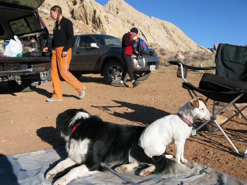 Two dogs in love... Bess and Rosco really hit it off on this trip.  <br> In the background Maura and Paul getting ready for the new routes of the day.