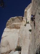 Rock Climbing Photo: climbing up pete's thanks
