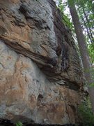 More rock at Yellow Bluff.