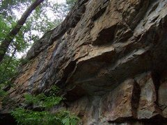 Overhanging sandstone at Yellow Bluff.