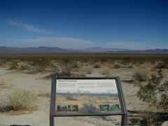 Rock Climbing Photo: The vast Pinto Basin