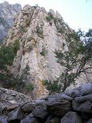 Rock Climbing Photo: Wonder Wall