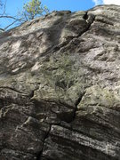 Rock Climbing Photo: One of those climbs on the...errr...left side. An ...