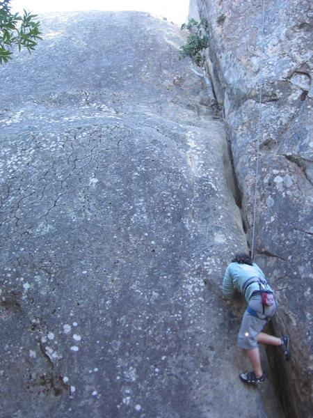 Rock Climbing Photo: Cecilia cursing chouinard's crack