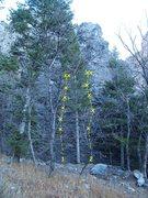 Rock Climbing Photo: Tank Canyon 1. Half Pint 5.7 2. Small Fry 5.4
