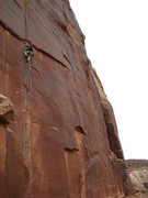 Rock Climbing Photo: mike willig cranking coyne crack