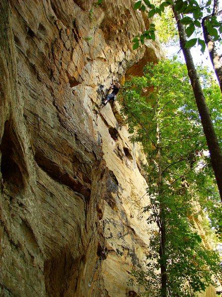 Rock Climbing Photo: Ben near the top of Brief History of Climb, 5.10c ...