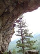 Rock Climbing Photo: The Cave