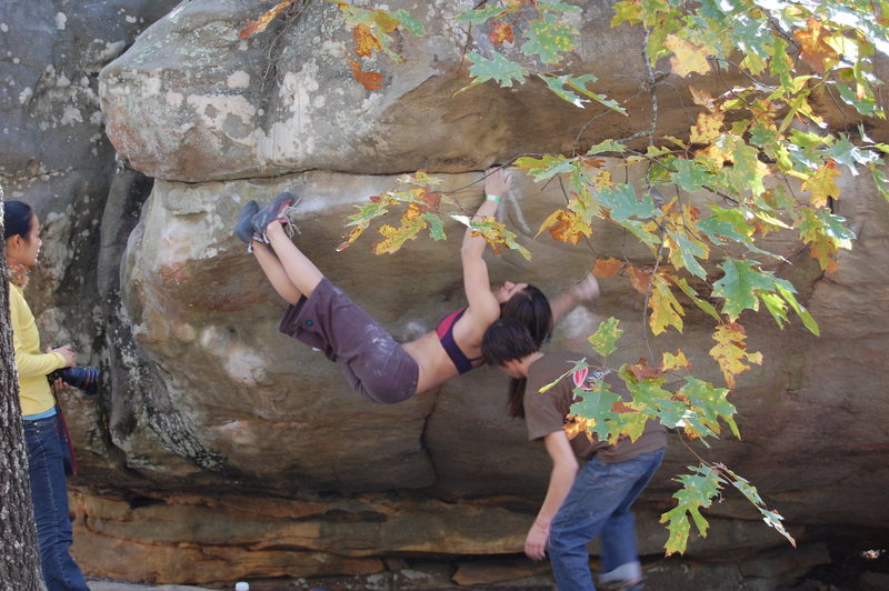 Rock Climbing Photo: Alex Puccio.