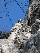 Rock Climbing Photo: Le Gourmet 5.4, Seneca Rocks, WV