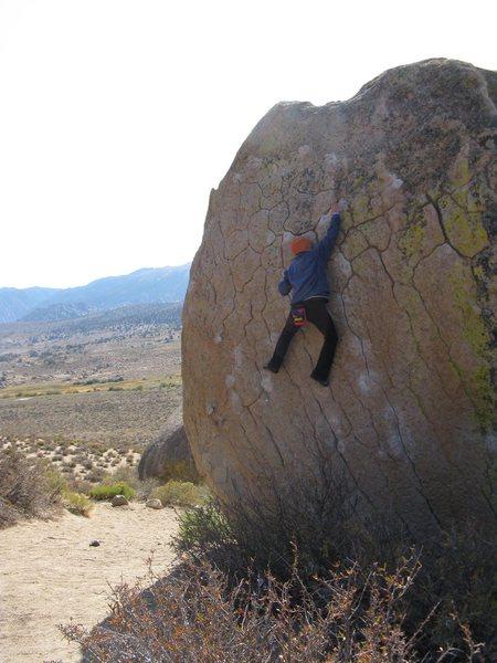 Rock Climbing Photo: Green Wall Essential - Bishop