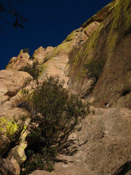 Rock Climbing Photo: The start of Ewephoria
