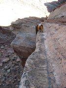 Rock Climbing Photo: Scott on Pitch 5