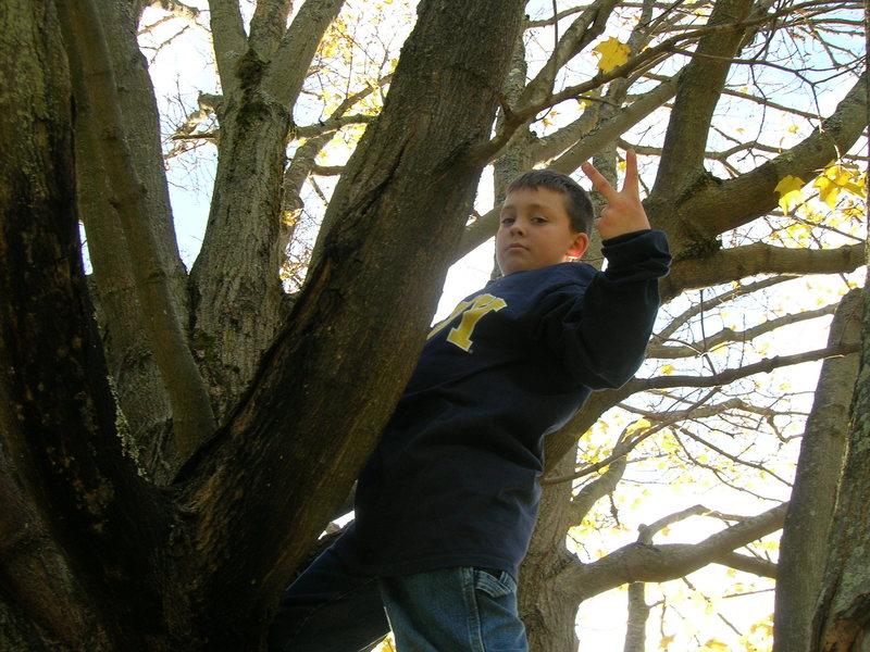 Jeb climbing trees!!
