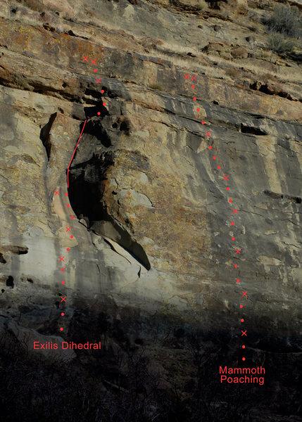 Derrydale Cliff topo