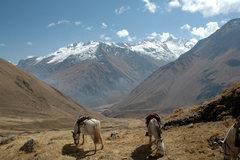 Rock Climbing Photo: En route to Machu Picchu