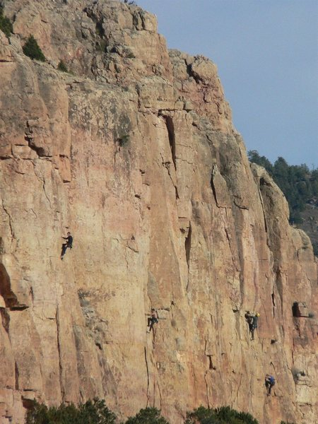 """Climbers on the right side of Cactus Cliff on a sunny Saturday in December, 2008.  The climber in black on the left is on """"Oscar de la Cholla""""."""