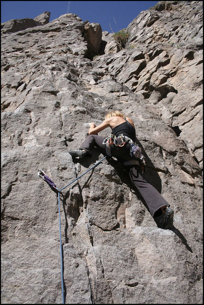Rock Climbing Photo: Shannon up this great starter lead.