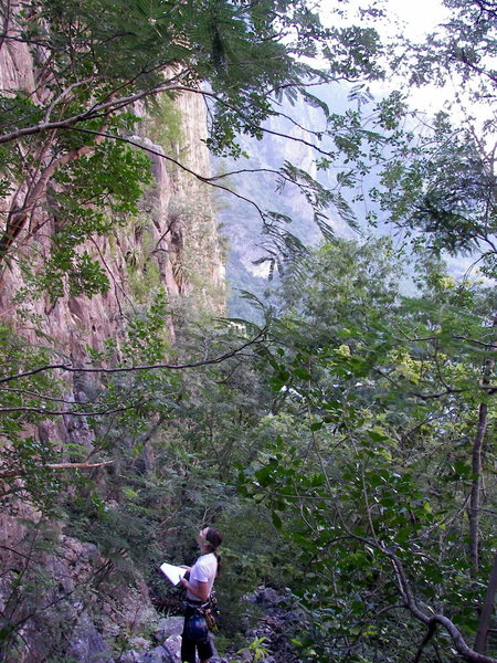 Rock Climbing Photo: Route finding in Los Lobos Canyon