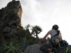 Rock Climbing Photo: Carolina leading the final pitch of Dope Ninja at ...