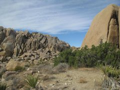 Rock Climbing Photo: The boulder in the right foreground hosts Kidney B...