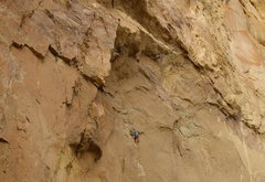 Rock Climbing Photo: Bubbas In Bondage pitch 2.