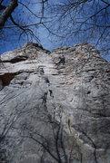 Rock Climbing Photo: Joey on Knob.