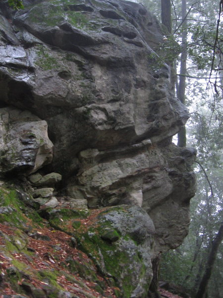 Rock Climbing Photo: 'Pigs Feat' is on the right , but the jagged looki...