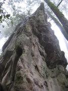 Rock Climbing Photo: The striking arete on Lyme Diseas Rock.