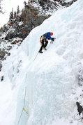 Rock Climbing Photo: Chicken Screamer(tm) testing on Scottish Gully.  P...