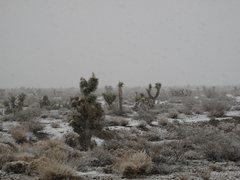 Rock Climbing Photo: Snow in the desert