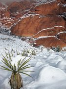 Rock Climbing Photo: 2ND Pullout, Red Rock.  Note the ice pond in the m...