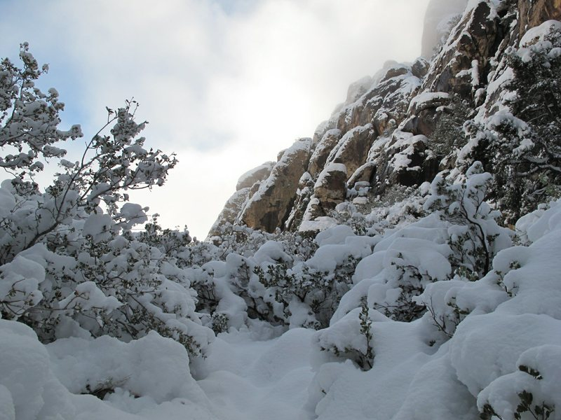 Hidden Falls Area. Red Rock. Dec 18, 2008.
