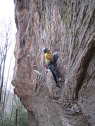 Rock Climbing Photo: Mike unearths the difficult crux of The Dinosaur