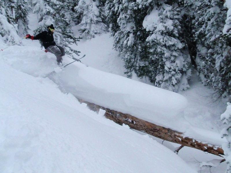 Tree skiing.  Photo taken by Jeff Barnow