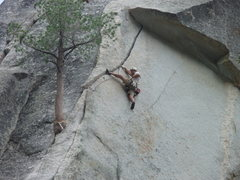 Rock Climbing Photo: Flower of High Ranking (Suicide)CA