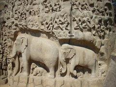 Rock Climbing Photo: Life-size elephants - don't boulder on these!