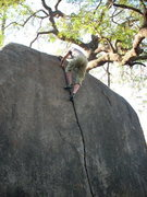Rock Climbing Photo: Topping out of the finger crack . . .