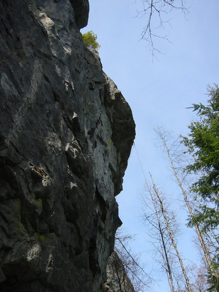 The right side of Fern Hill has some steep rock sporting a few routes in the 12+ range.