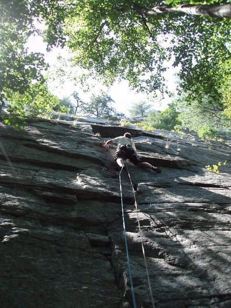 Rock Climbing Photo: Heading up WASP with wasp stings from our previous...