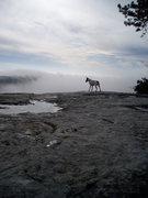 Rock Climbing Photo: Dawso