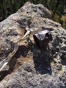 Rock Climbing Photo: Conn can on top of Split Picket; Cathedral Spires ...