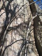 Rock Climbing Photo: the the