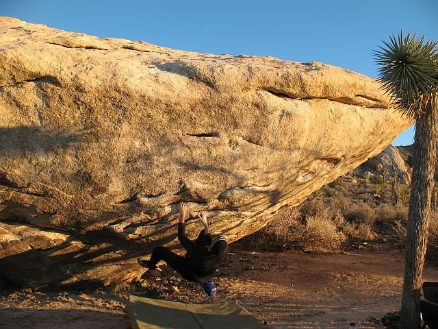 Rock Climbing Photo: Starting up Sloper Safari (V4), Joshua Tree NP