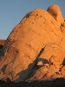 Rock Climbing Photo: Saddle Rocks before sunset, Joshua Tree NP