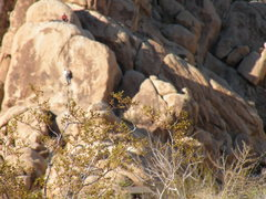 Rock Climbing Photo: Climbers in Indian Cove, not sure which route