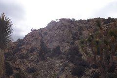 Rock Climbing Photo: a little bit of a closer view