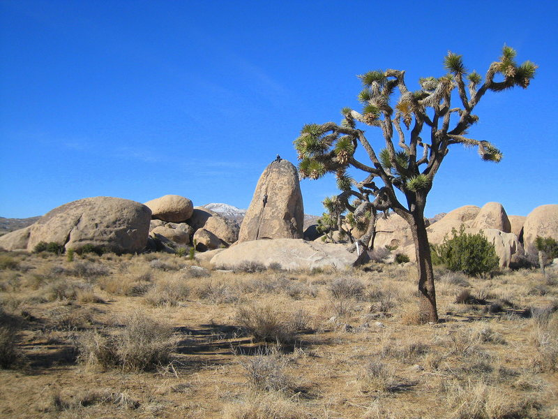 The Planet X Pinnacle on a fine December day, 2008.